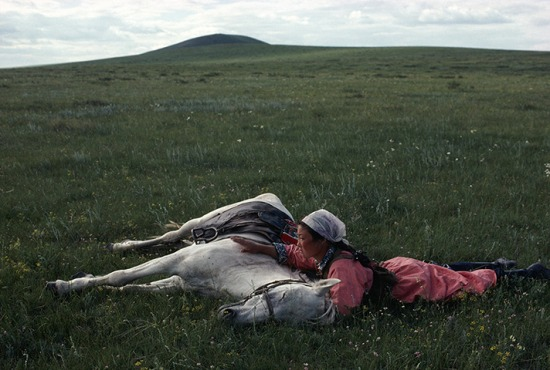1979-horse-training-eve-arnold.jpg